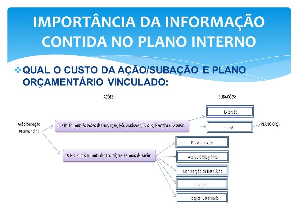  QUAL O CUSTO DA AÇÃO/SUBAÇÃO E PLANO ORÇAMENTÁRIO VINCULADO: IMPORTÂNCIA DA INFORMAÇÃO CONTIDA NO PLANO INTERNO
