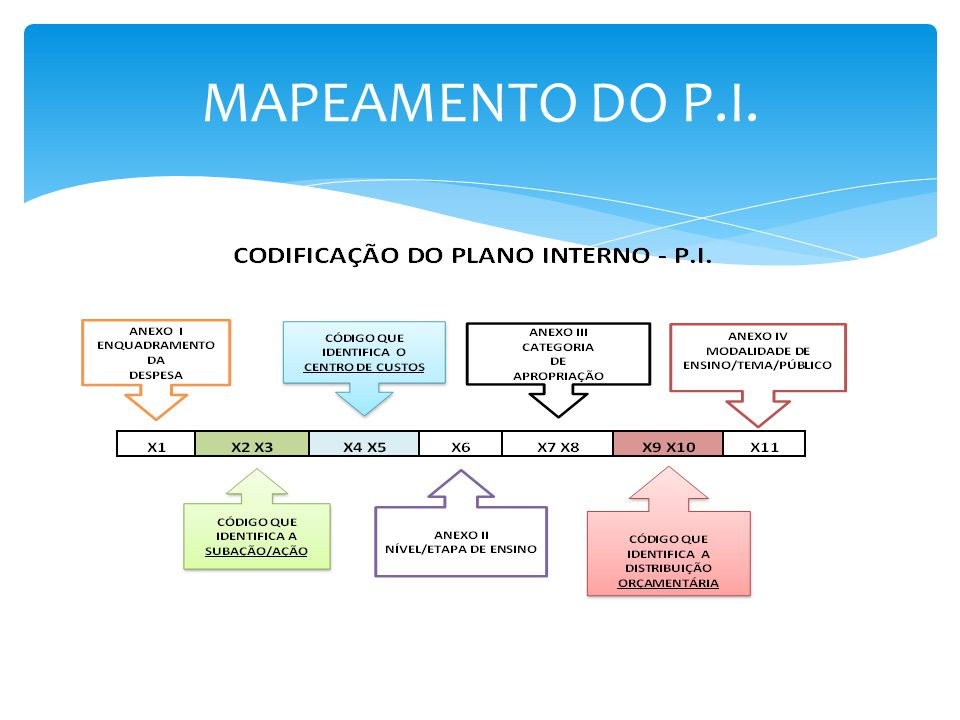 MAPEAMENTO DO P.I.