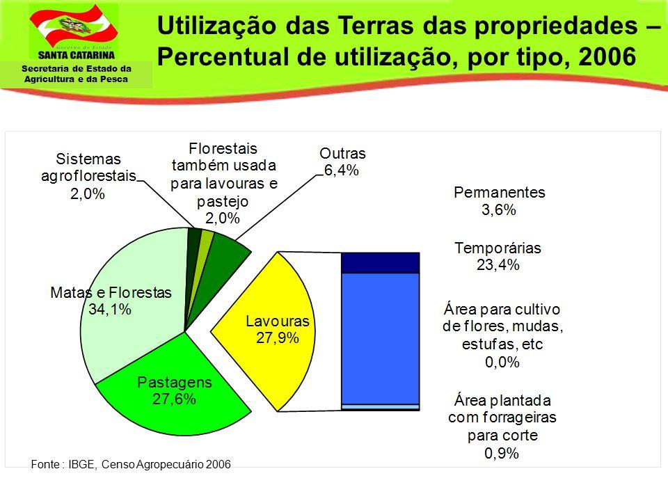 Secretaria de Estado da Agricultura e da Pesca Utilização das Terras das propriedades – Percentual de utilização, por tipo, 2006 Fonte : IBGE, Censo A