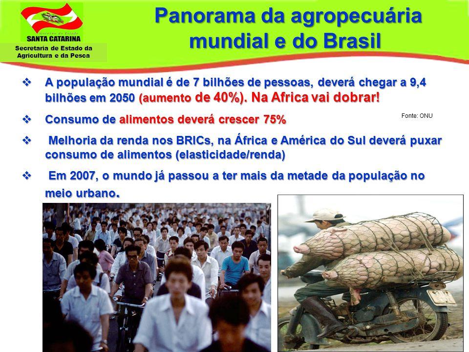 Secretaria de Estado da Agricultura e da Pesca Panorama da agropecuária mundial e do Brasil Panorama da agropecuária mundial e do Brasil  A população
