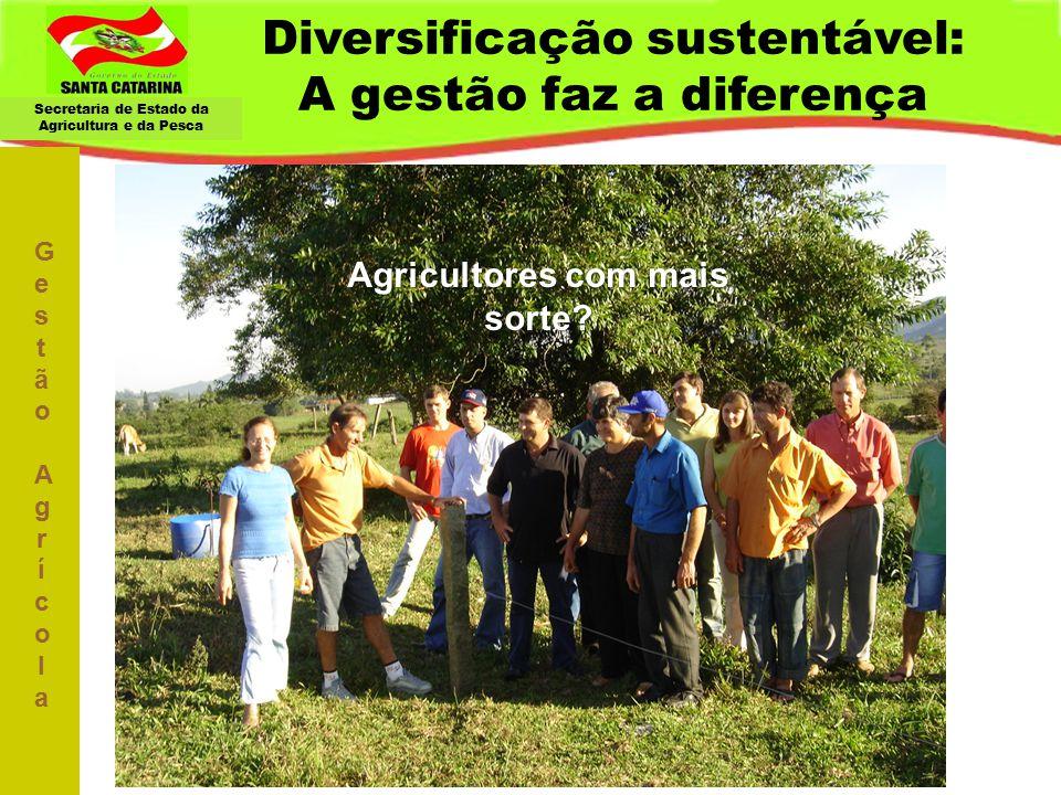Secretaria de Estado da Agricultura e da Pesca Diversificação sustentável: A gestão faz a diferença Gestão AgrícolaGestão Agrícola Agricultores com ma