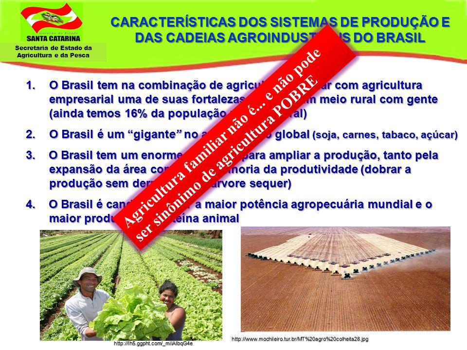 Secretaria de Estado da Agricultura e da Pesca SC - População – Rural e Urbana – 1950 a 2010 Fonte : IBGE - Censo 1950 a 2010 77% 16% 84% 23%
