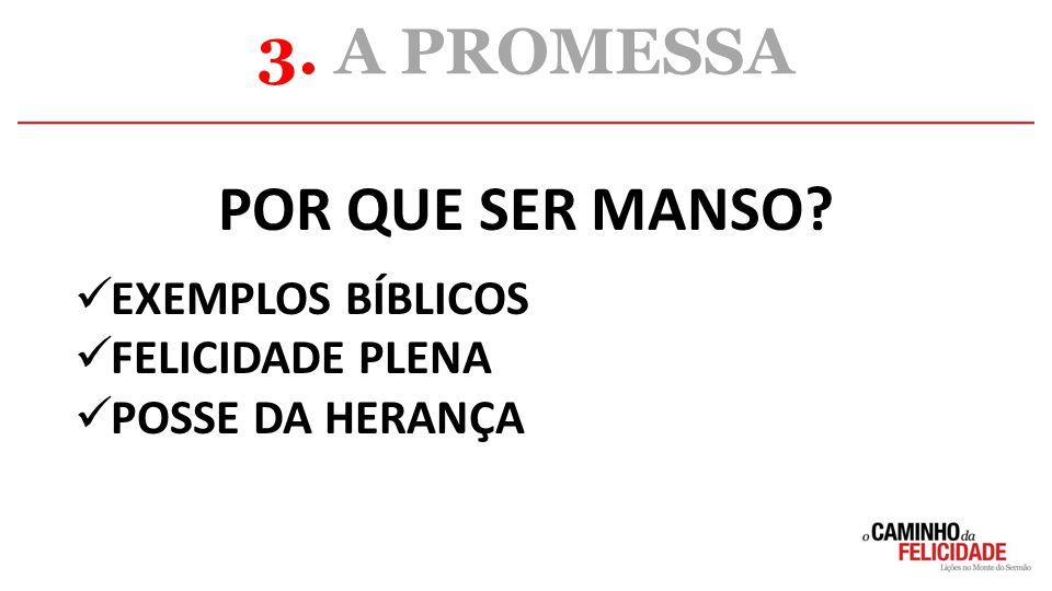 POR QUE SER MANSO? EXEMPLOS BÍBLICOS FELICIDADE PLENA POSSE DA HERANÇA 3. A PROMESSA