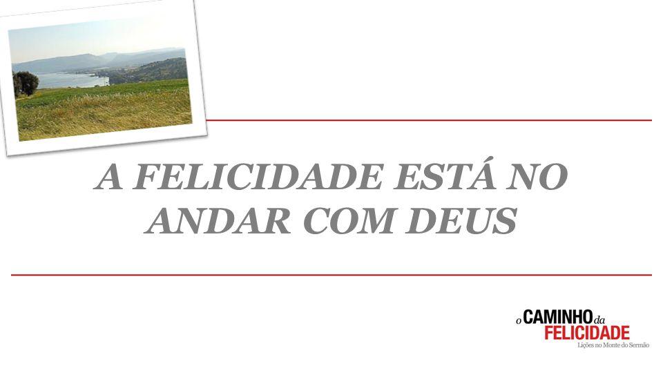 EVIDÊNCIAS DA MANSIDÃO  DISPONIBILIDADE  DEPENDÊNCIA  TOLERÂNCIA 2. A PRÁTICA