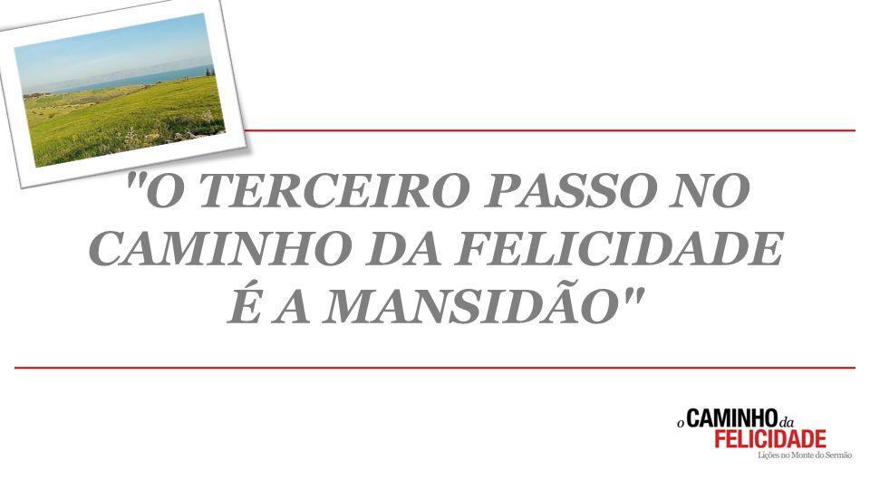 O TERCEIRO PASSO NO CAMINHO DA FELICIDADE É A MANSIDÃO