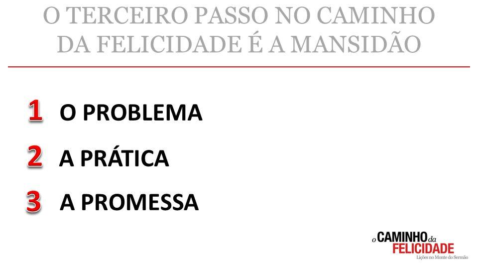 O TERCEIRO PASSO NO CAMINHO DA FELICIDADE É A MANSIDÃO O PROBLEMA A PRÁTICA A PROMESSA