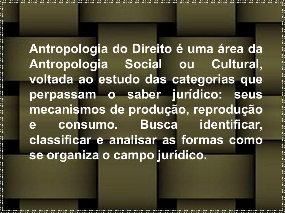 Antropologia do Direito é uma área da Antropologia Social ou Cultural, voltada ao estudo das categorias que perpassam o saber jurídico: seus mecanismos de produção, reprodução e consumo.