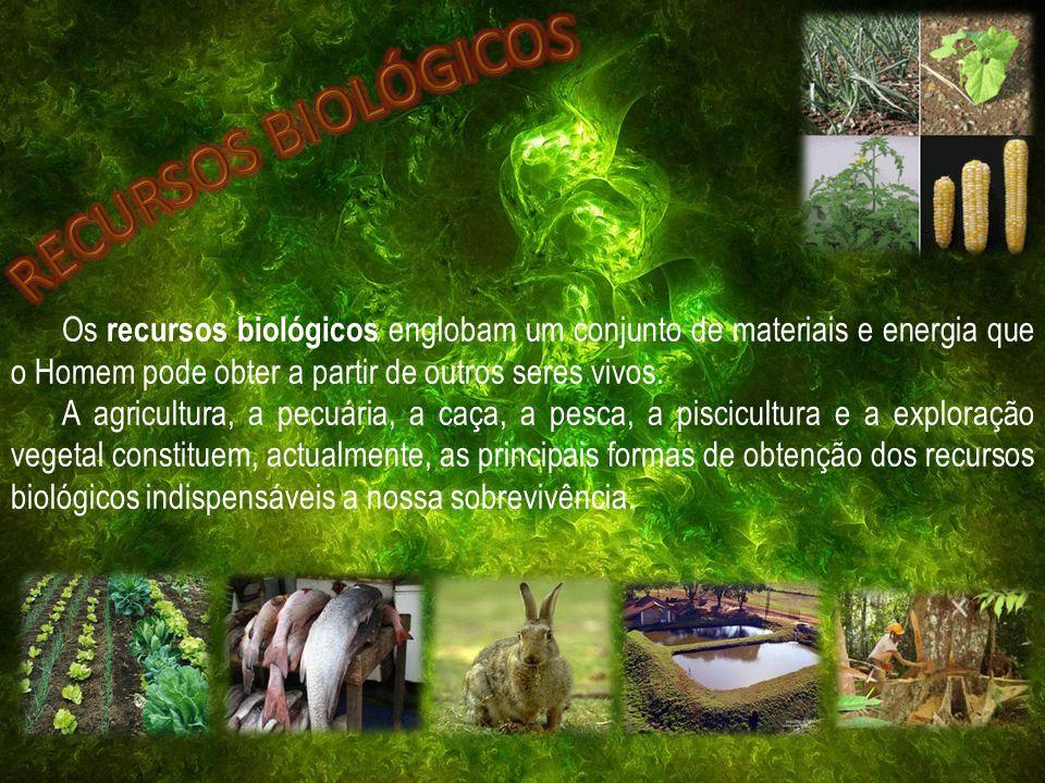Os recursos biológicos englobam um conjunto de materiais e energia que o Homem pode obter a partir de outros seres vivos. A agricultura, a pecuária, a