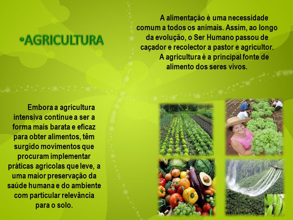 A alimentação é uma necessidade comum a todos os animais. Assim, ao longo da evolução, o Ser Humano passou de caçador e recolector a pastor e agricult
