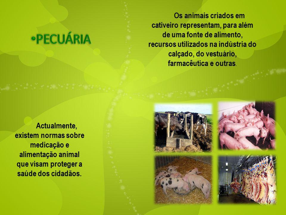 Os animais criados em cativeiro representam, para além de uma fonte de alimento, recursos utilizados na indústria do calçado, do vestuário, farmacêutica e outras.
