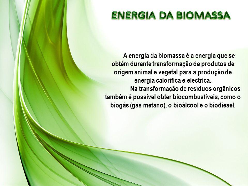 A energia da biomassa é a energia que se obtém durante transformação de produtos de origem animal e vegetal para a produção de energia calorífica e eléctrica.