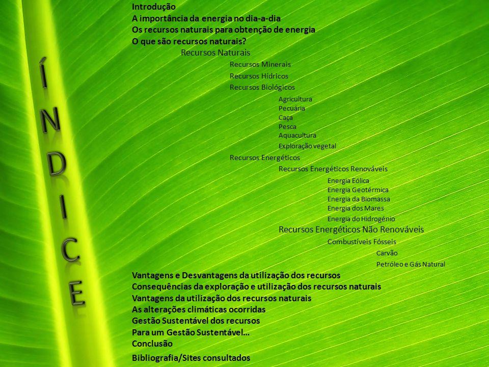 Introdução A importância da energia no dia-a-dia Os recursos naturais para obtenção de energia O que são recursos naturais? Recursos Naturais Recursos