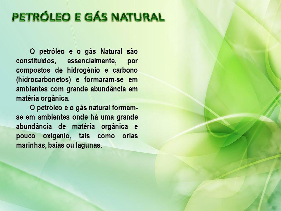 O petróleo e o gás Natural são constituídos, essencialmente, por compostos de hidrogénio e carbono (hidrocarbonetos) e formaram-se em ambientes com gr