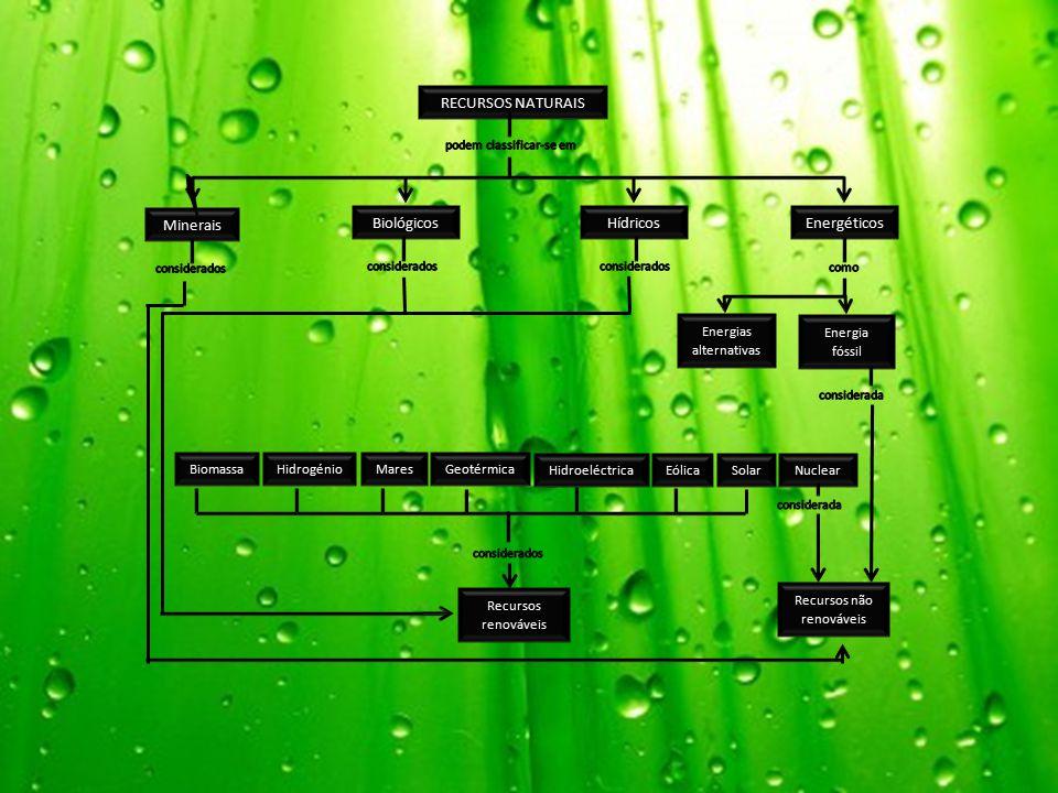 RECURSOS NATURAIS Minerais BiológicosEnergéticosHídricos Energia fóssil Energias alternativas BiomassaHidrogénioGeotérmicaMares HidroeléctricaEólicaSolarNuclear Recursos não renováveis Recursos renováveis