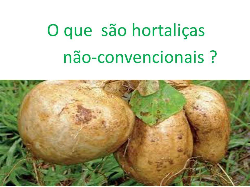 Conclusão Com a realização deste trabalho, observou-se que o consumo das hortaliças não-convencionais ocorre em pouca quantidade em nosso pais, e suas origens ainda são desconhecidas pela sociedade atual.