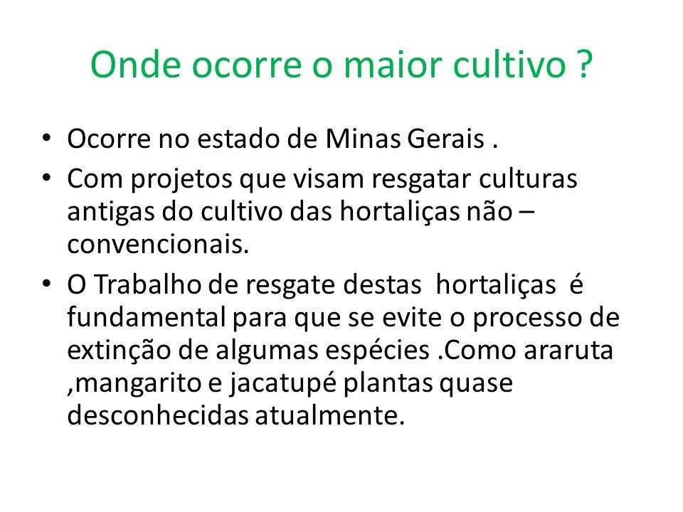 Onde ocorre o maior cultivo ? Ocorre no estado de Minas Gerais. Com projetos que visam resgatar culturas antigas do cultivo das hortaliças não – conve