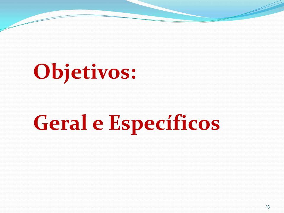 13 Objetivos: Geral e Específicos