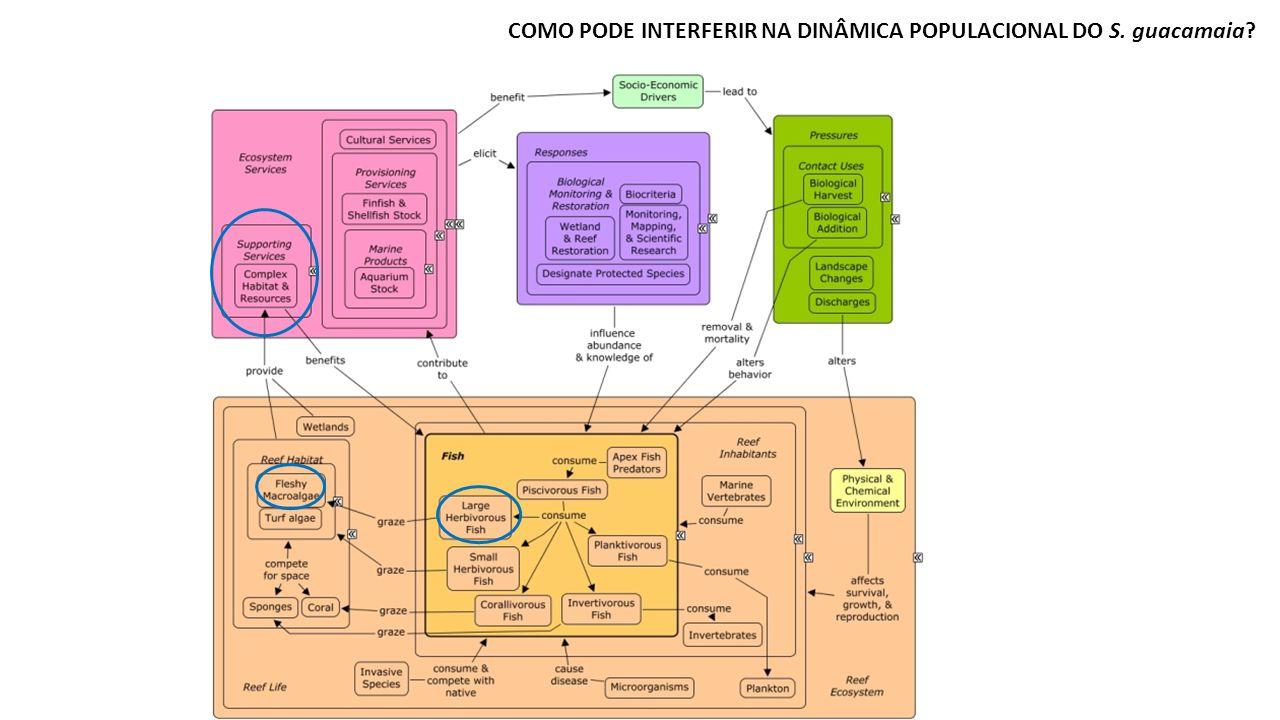 COMO PODE INTERFERIR NA DINÂMICA POPULACIONAL DO S. guacamaia?