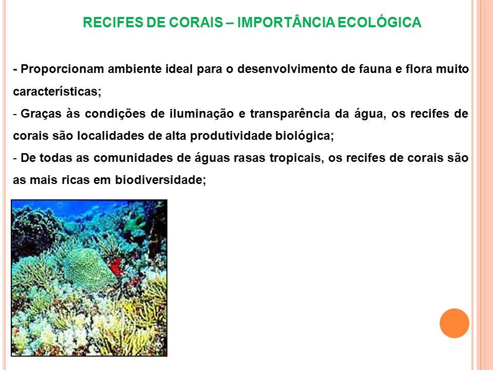 RECIFES DE CORAIS – IMPORTÂNCIA ECOLÓGICA - - Proporcionam ambiente ideal para o desenvolvimento de fauna e flora muito características; - Graças às condições de iluminação e transparência da água, os recifes de corais são localidades de alta produtividade biológica; - De todas as comunidades de águas rasas tropicais, os recifes de corais são as mais ricas em biodiversidade;