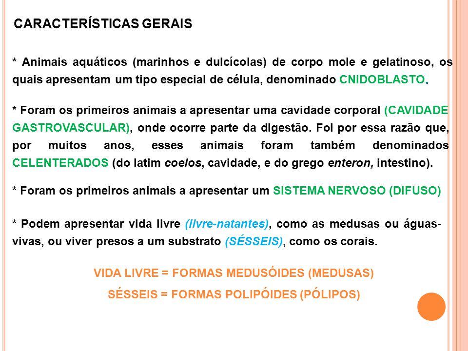 CARACTERÍSTICAS GERAIS. * Animais aquáticos (marinhos e dulcícolas) de corpo mole e gelatinoso, os quais apresentam um tipo especial de célula, denomi
