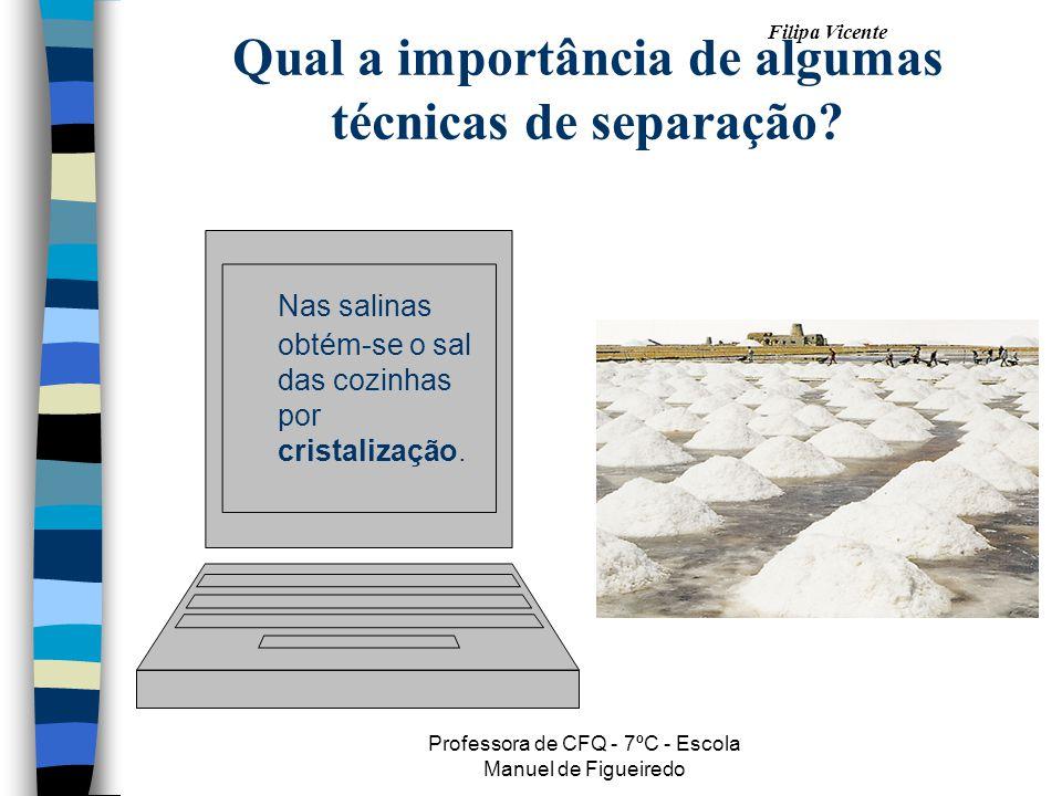 Filipa Vicente Professora de CFQ - 7ºC - Escola Manuel de Figueiredo Qual a importância de algumas técnicas de separação? Nas salinas obtém-se o sal d