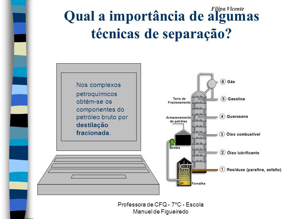 Filipa Vicente Professora de CFQ - 7ºC - Escola Manuel de Figueiredo Qual a importância de algumas técnicas de separação? Nos complexos petroquímicos
