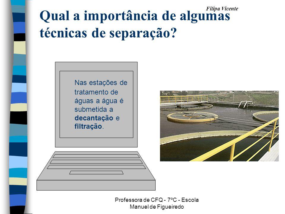 Filipa Vicente Professora de CFQ - 7ºC - Escola Manuel de Figueiredo Qual a importância de algumas técnicas de separação? Nas estações de tratamento d