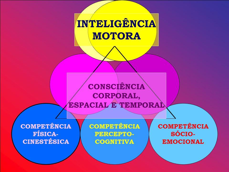 COMPETÊNCIA FÍSICA- CINESTÉSICA COMPETÊNCIA SÓCIO- EMOCIONAL COMPETÊNCIA PERCEPTO- COGNITIVA CONSCIÊNCIA CORPORAL, ESPACIAL E TEMPORAL INTELIGÊNCIA MOTORA