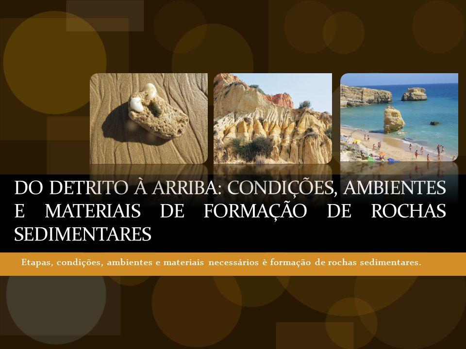 DO DETRITO À ARRIBA: CONDIÇÕES, AMBIENTES E MATERIAIS DE FORMAÇÃO DE ROCHAS SEDIMENTARES Etapas, condições, ambientes e materiais necessários è formaç