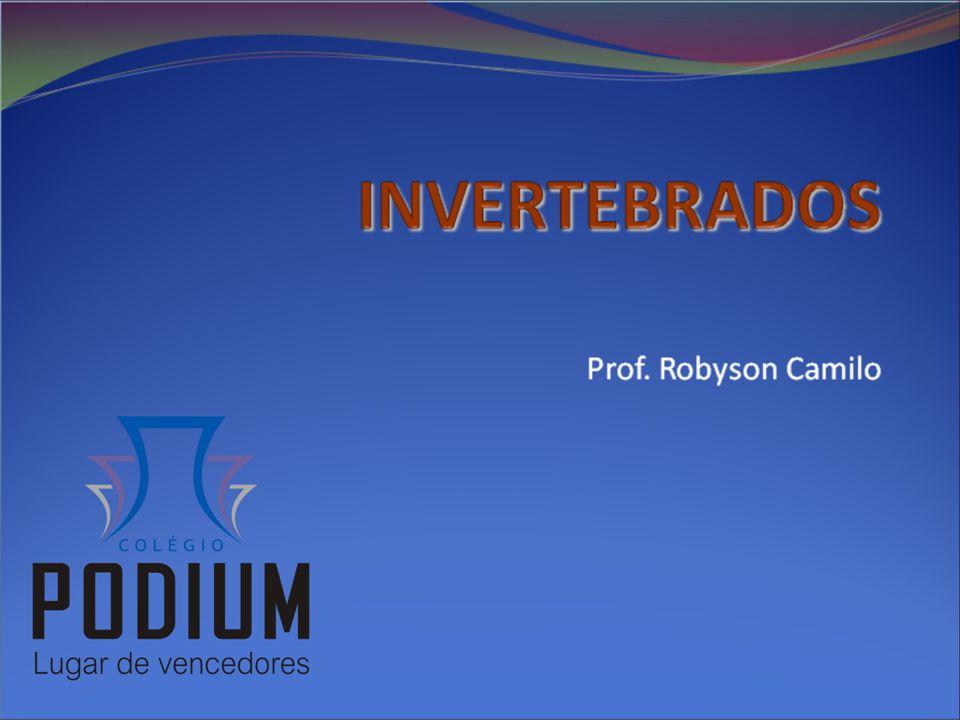 Prof. Robyson Camilo