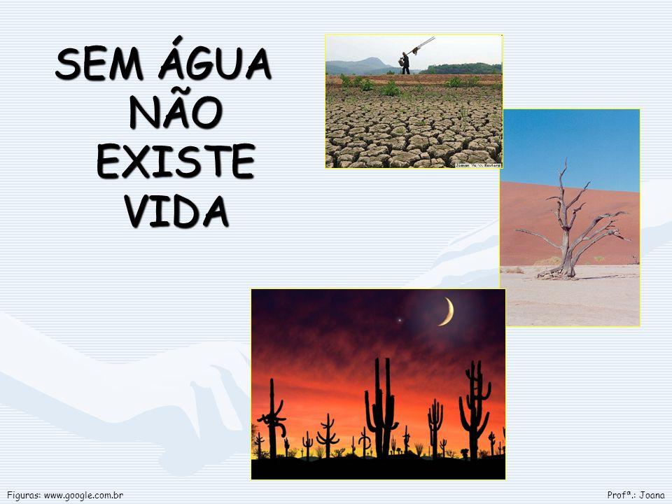 SEM ÁGUA NÃO EXISTE VIDA Profª.: JoanaFiguras: www.google.com.br