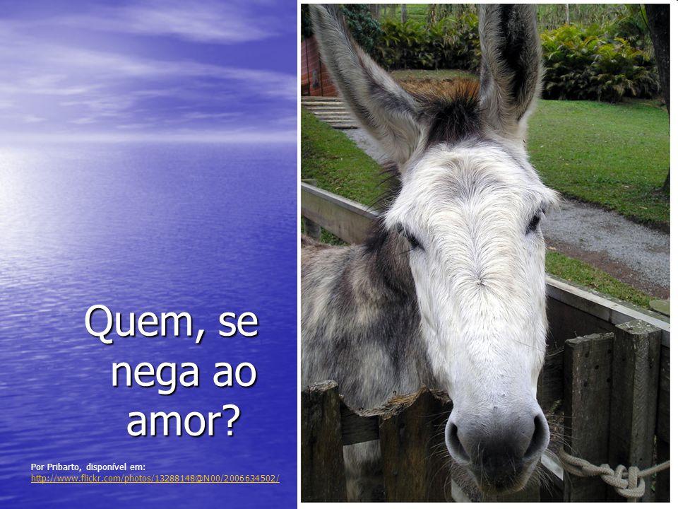 Por Pribarto, disponível em: http://www.flickr.com/photos/13288148@N00/2006634502/ http://www.flickr.com/photos/13288148@N00/2006634502/ Quem, se nega ao amor?
