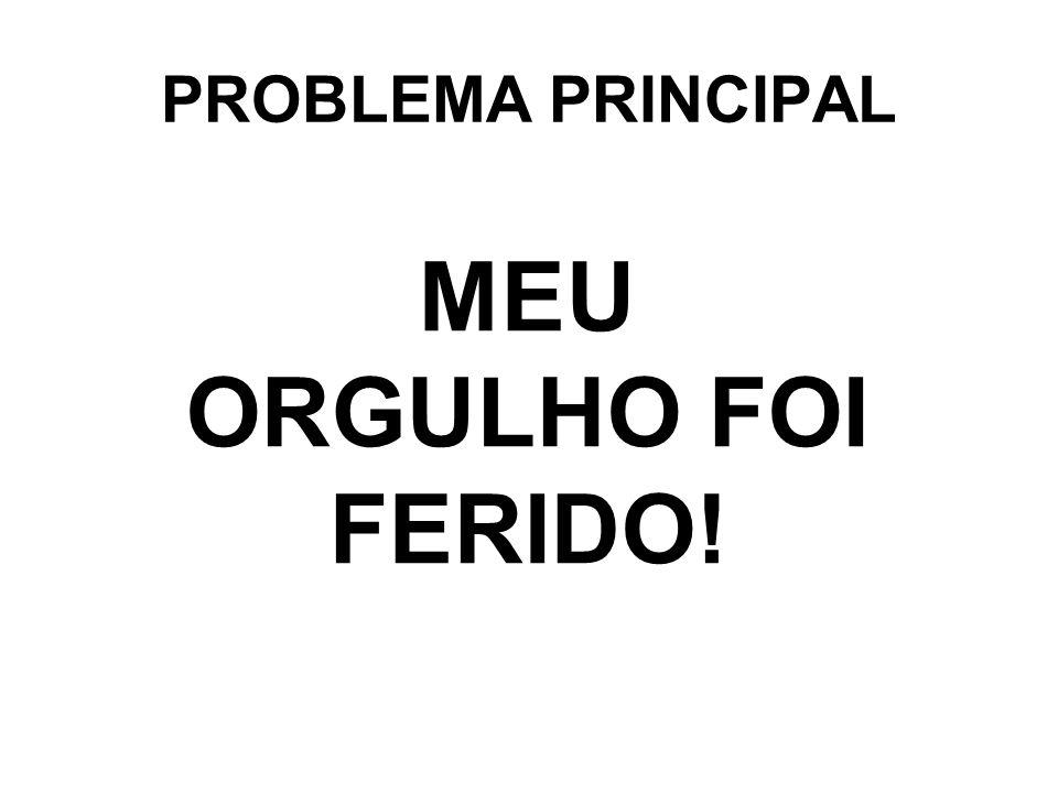 PROBLEMA PRINCIPAL MEU ORGULHO FOI FERIDO!
