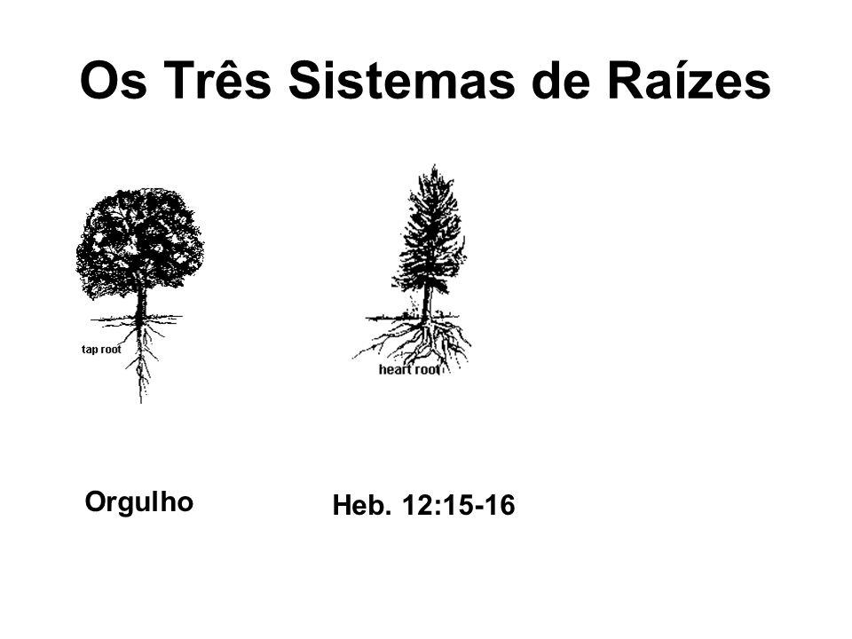 Os Três Sistemas de Raízes Orgulho Heb. 12:15-16