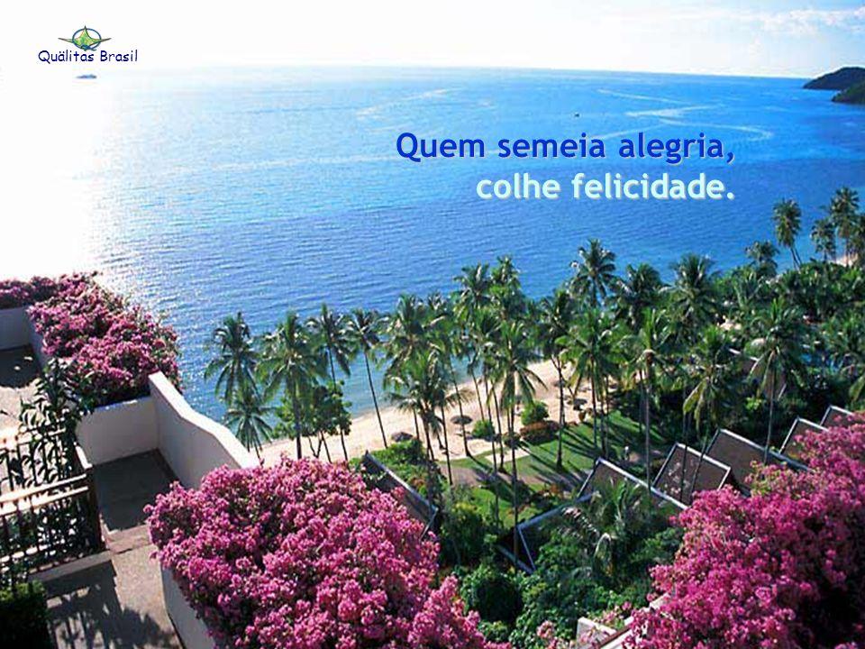 Quem planta amor, colhe amizade. colhe amizade. Quälitas Brasil
