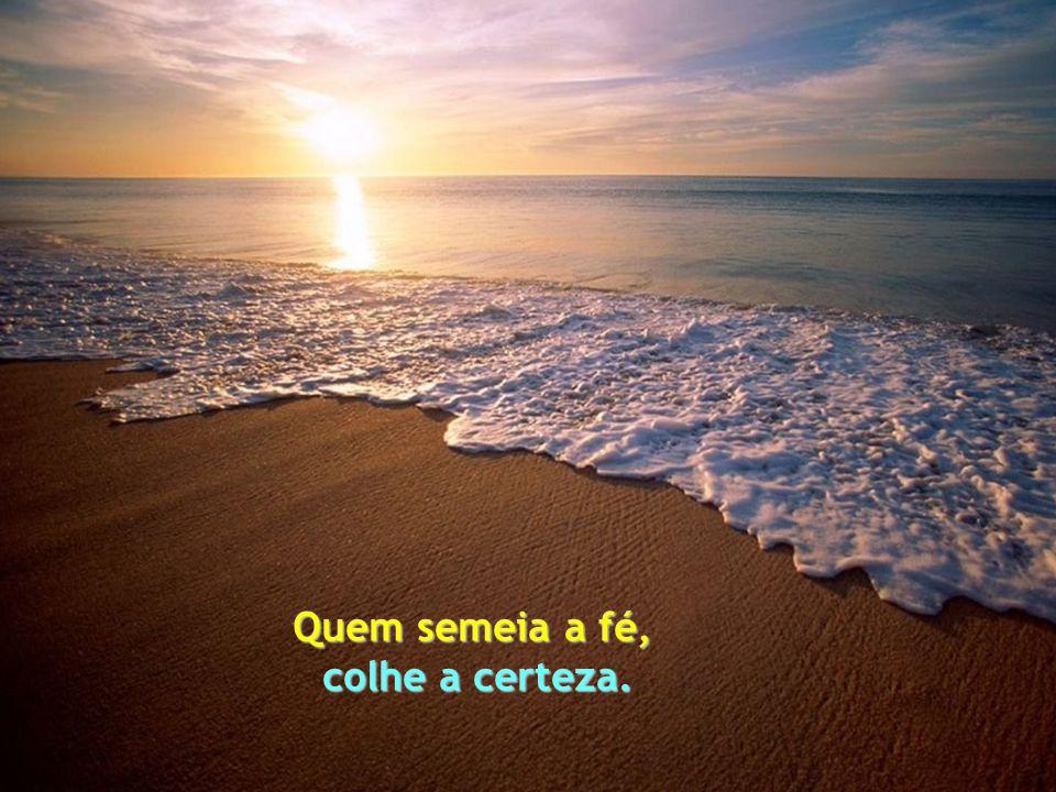 Quem semeia alegria, colhe felicidade. Quälitas Brasil