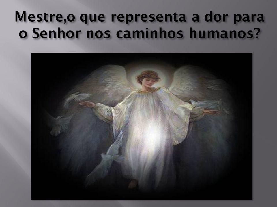 Amado Mestre Jesus, Cordeiro Misericordioso do Pai de Todas as Graças.