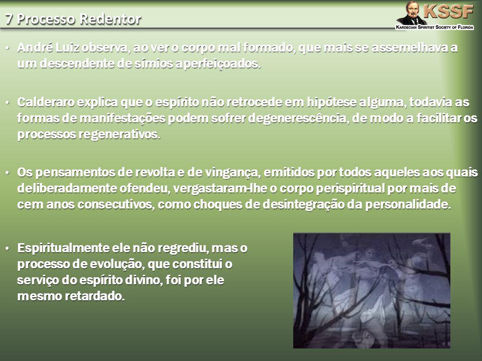 7 Processo Redentor André Luiz observa, ao ver o corpo mal formado, que mais se assemelhava a um descendente de símios aperfeiçoados.