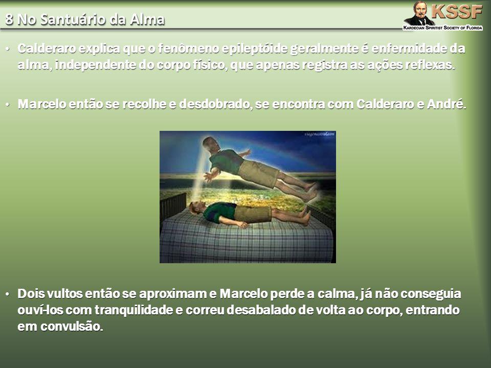 8 No Santuário da Alma Calderaro explica que o fenômeno epileptóide geralmente é enfermidade da alma, independente do corpo físico, que apenas registr