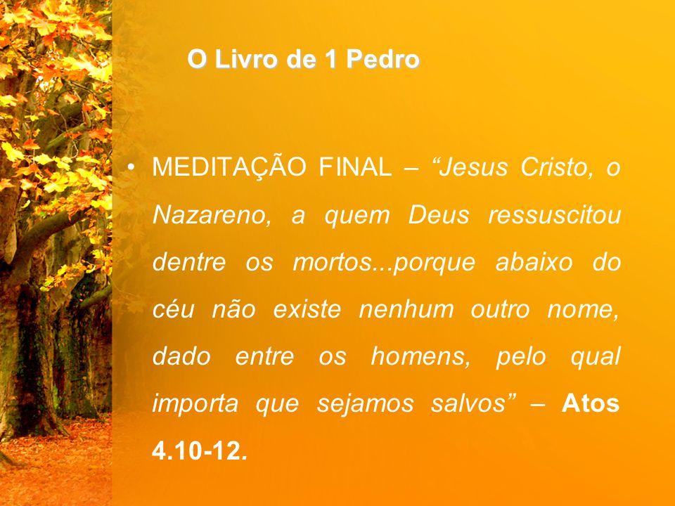 """O Livro de 1 Pedro MEDITAÇÃO FINAL – """"Jesus Cristo, o Nazareno, a quem Deus ressuscitou dentre os mortos...porque abaixo do céu não existe nenhum outr"""