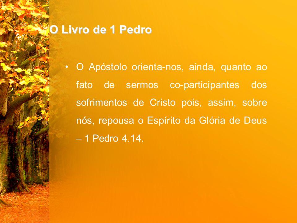 O Livro de 1 Pedro O Apóstolo orienta-nos, ainda, quanto ao fato de sermos co-participantes dos sofrimentos de Cristo pois, assim, sobre nós, repousa