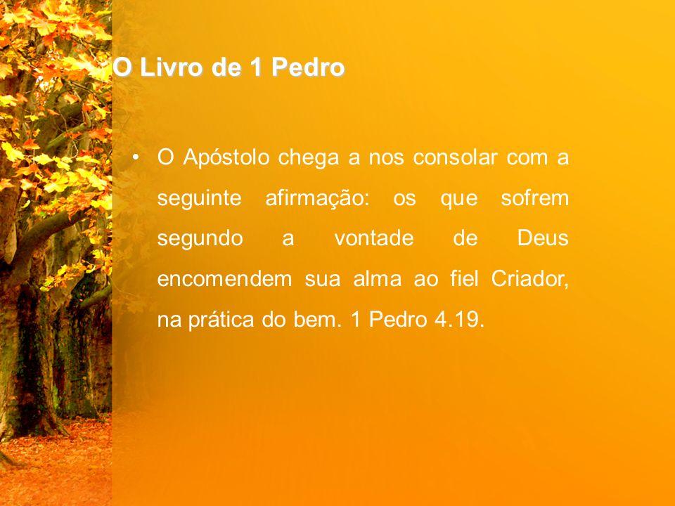 O Livro de 1 Pedro O Apóstolo chega a nos consolar com a seguinte afirmação: os que sofrem segundo a vontade de Deus encomendem sua alma ao fiel Criad