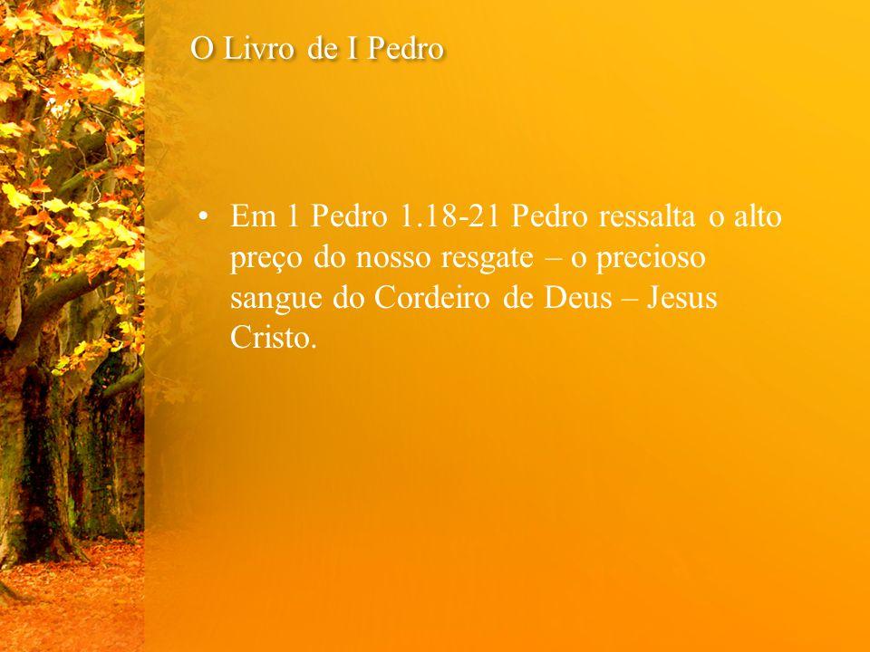 O Livro de I Pedro Em 1 Pedro 1.22-25 Pedro orienta- nos a viver a Santidade em Amor, na comunhão, mostrando a insignificância da carne.