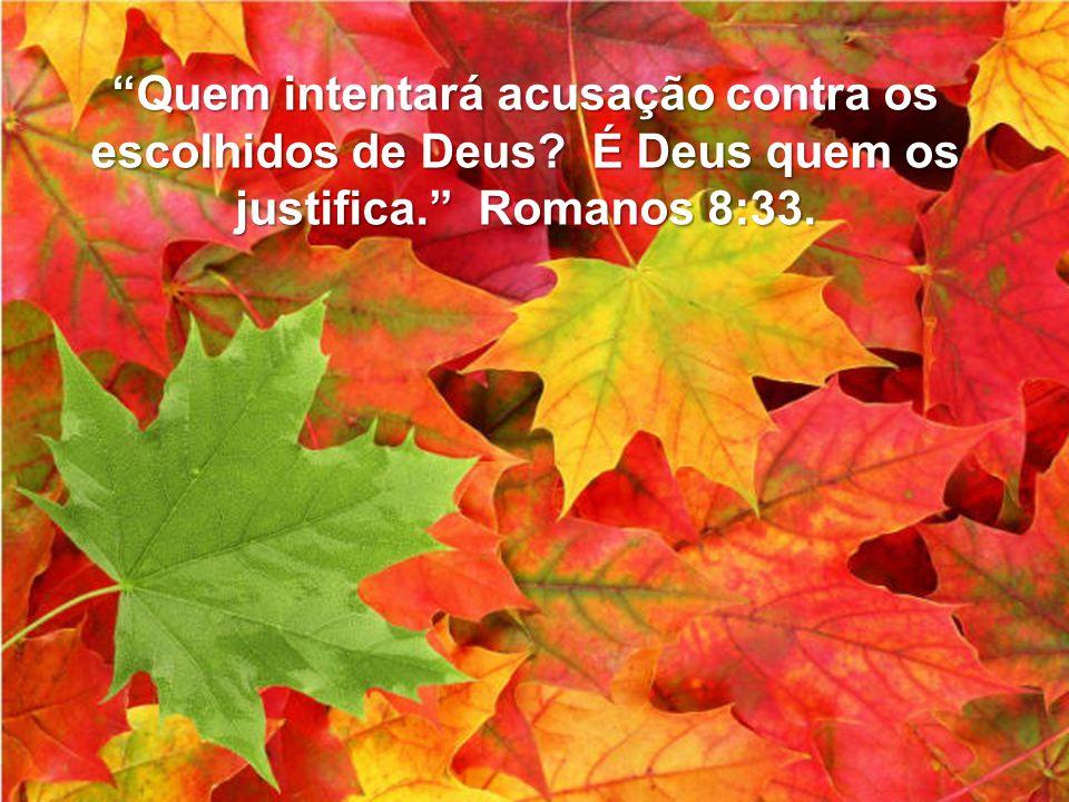 """""""Quem intentará acusação contra os escolhidos de Deus? É Deus quem os justifica."""" Romanos 8:33."""
