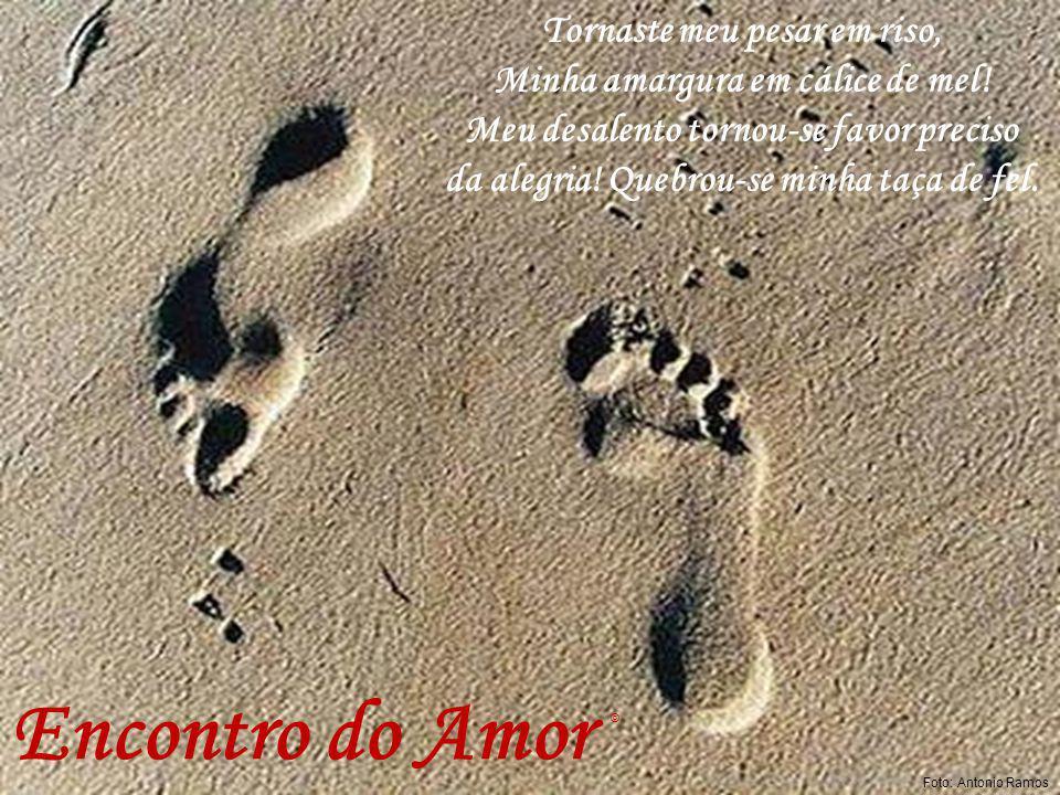 Diamante Negro farm2 Encontro do Amor Tua beleza enleva-me à sensações mil.