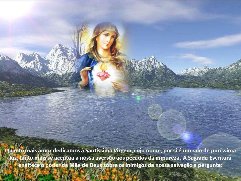 Quanto mais amor dedicamos à Santíssima Virgem, cujo nome, por si é um raio de puríssima luz, tanto mais se acentua a nossa aversão aos pecados da impureza.