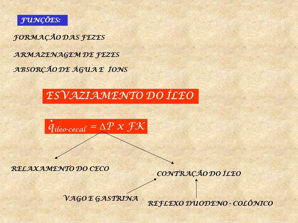 FK RELAXAMENTO DO ESFINCTER ÍLEO - CECAL GASTRINA DISTENSÃO DO CECO CONTRAÇÃO DO ESFINCTER ÍLEO-CECAL + VALVULA ILEO CECAL IMPEDEM O RETORNO PARA O ÍLEO