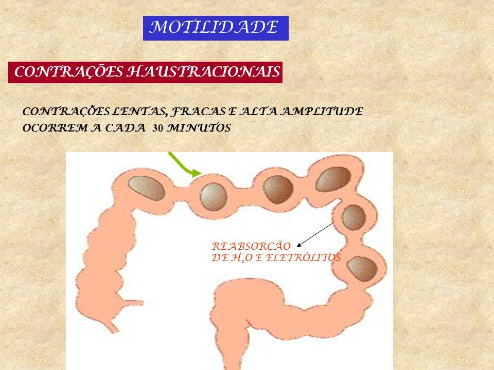 CONTRAÇÕES PROPULSIVAS MULTIAUSTRACIONAIS 5 a 10 cm/hora 1 a 3 vezes/dia: movimentos de massa GERADO PELAS CELULAS INTERSTICIAIS DE CAJAL RESÍDUO ALIMENTAR