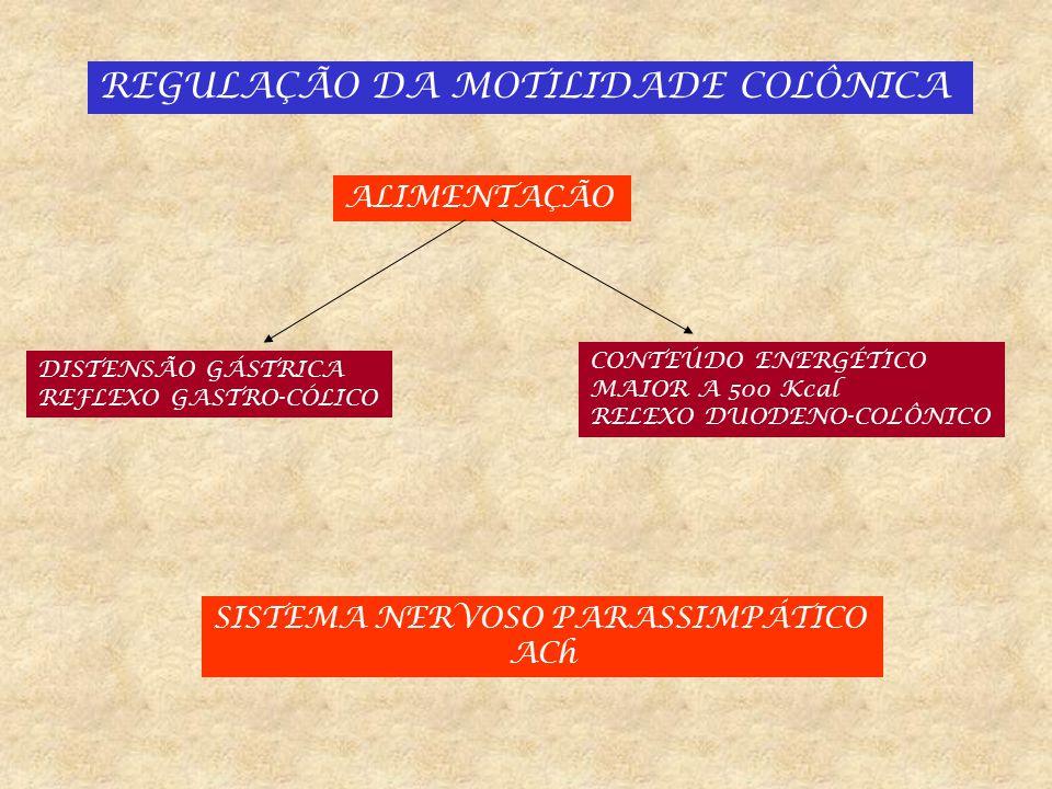 REGULAÇÃO DA MOTILIDADE COLÔNICA HORMONAL ESTIMULAM O CÓLON CCK SEROTONINA NEUROTENSINA MOTILINA GASTRINA INIBEM O CÓLON GLUCAGON SOMATOSTATINA VIP SECRETINA ESTROGENOS