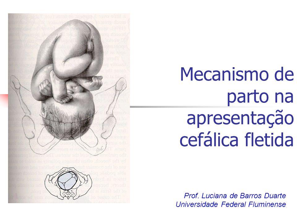 Mecanismo de parto na apresentação cefálica fletida Prof. Luciana de Barros Duarte Universidade Federal Fluminense
